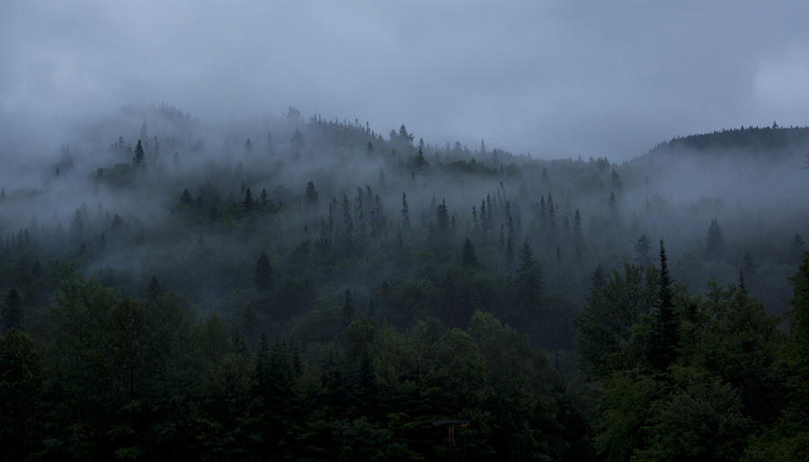 fog-mountain-isabel-poulin