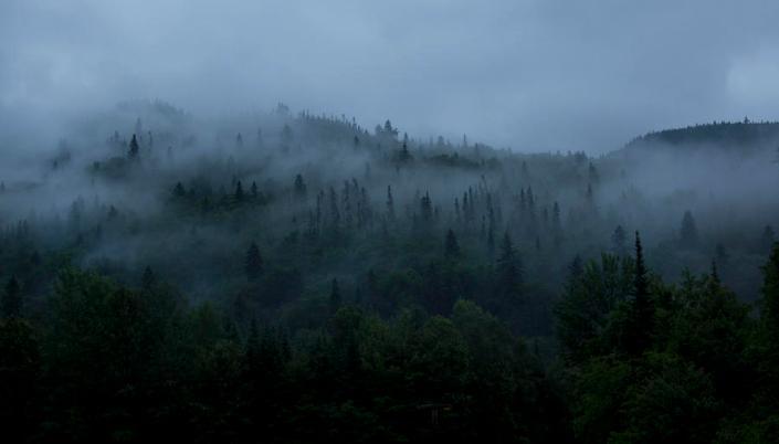fog-mountain-isabel-poulin